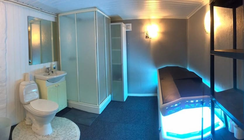 Basement bathroom with carpet, dimmable lights and tanning bed.