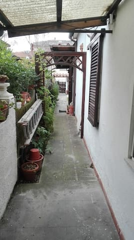 Antina Lido - Camaiore - Serviced apartment