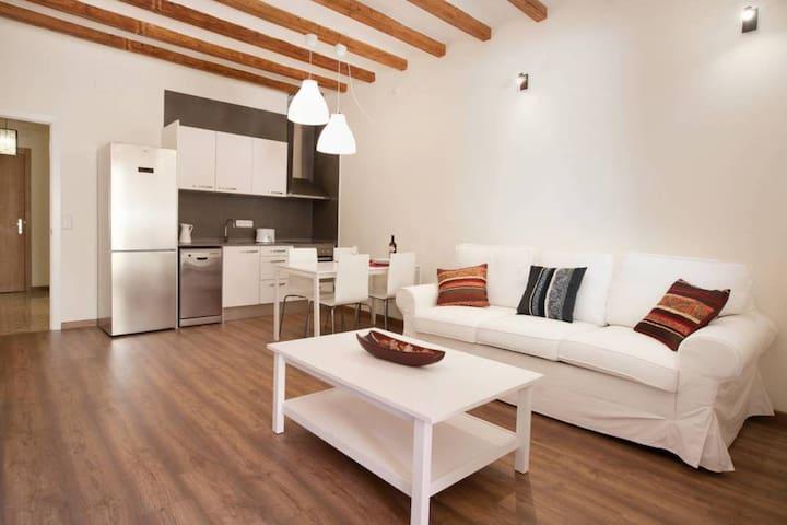 Casa Milá - large one bedroom apt in Gracia