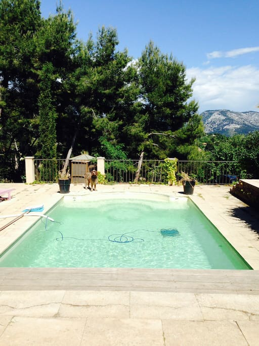 Studio piscine villa 10 mn sanary appartements louer for Piscine ollioules