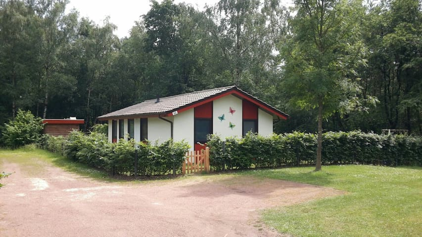 Aan bosrand gelegen vakantiehuis op vakantiepark - Uelsen