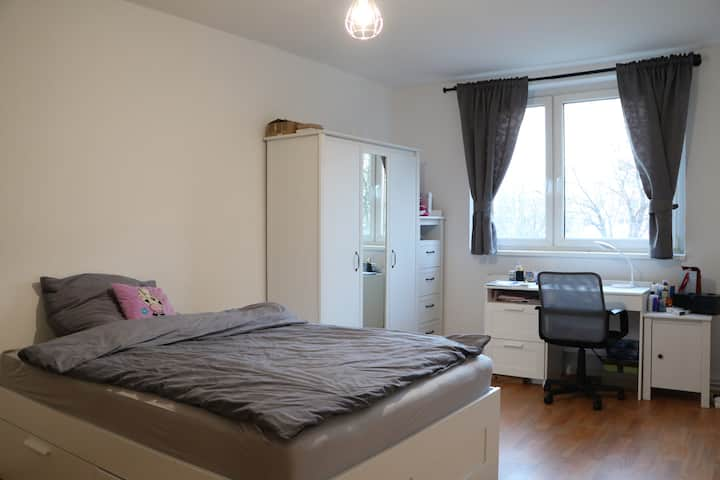Nice and cosy apartment with everything you needed