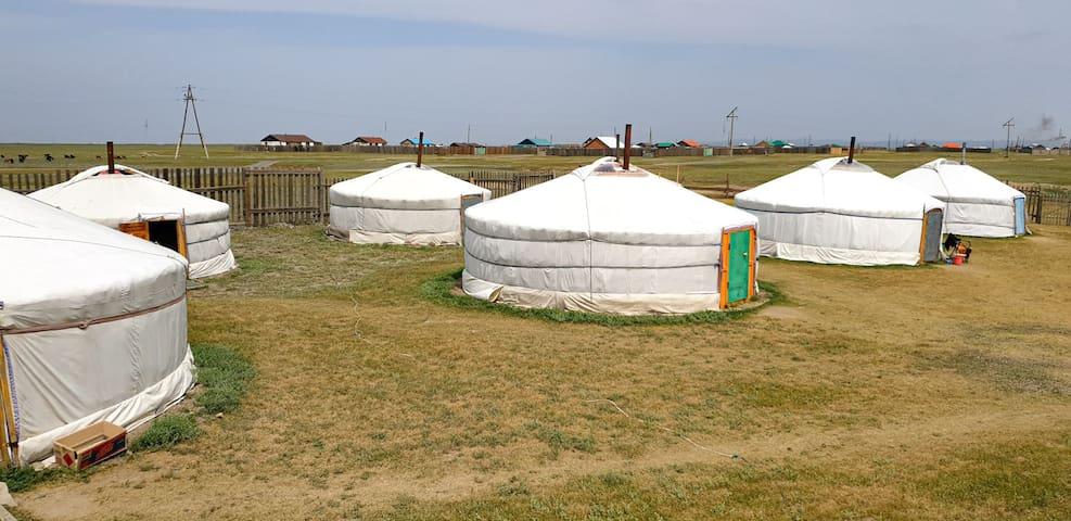 1 bed in a yurt dorm