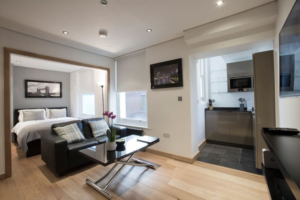 St Paul 39 S One Bedroom Open Plan Apartments For Rent In London England United Kingdom