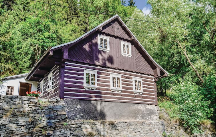 Holiday cottage with 2 bedrooms on 185m² in Rokytnice n. Jizerou