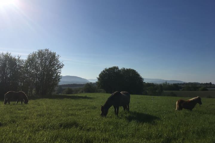 Opeggen farm