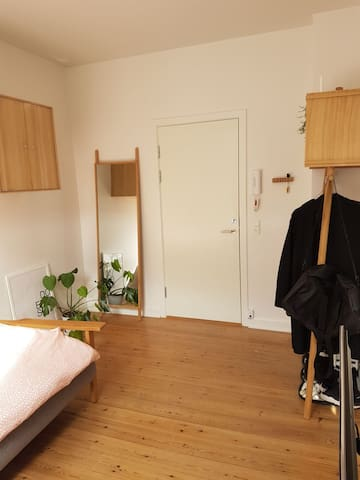 Stue/soveværelse