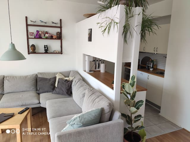 Fully furnished apartment in the heart of Nørrebro