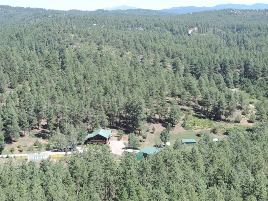Wooded Mountain Ranch Setting outside Durango - lots of room for walks, running on a good gravel road in the pines, hike to the hilltop or mountain biking.