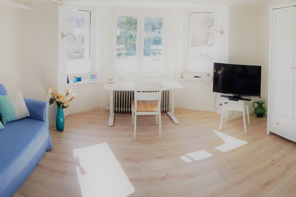 Apartment an der oker braunschweig bs zentrum wohnungen zur miete in braunschweig for Wohnungen in braunschweig