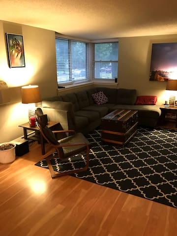 Comfortable Downtown Condo with Ideal Location - Minneapolis - Condominium