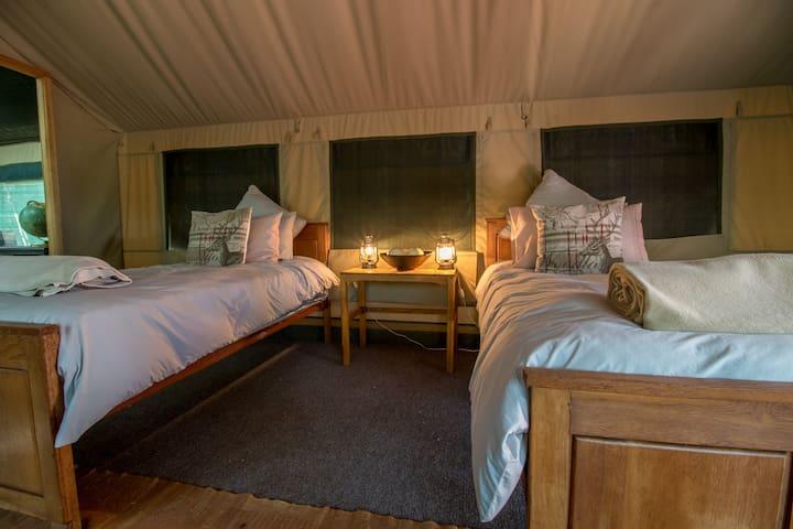 Luxury Tented Camp at Luara Wildlife - Thabazimbi - Hotel ekologiczny