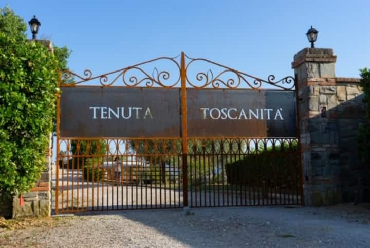 Tuscan Villa with pool in the beauty Chianti area
