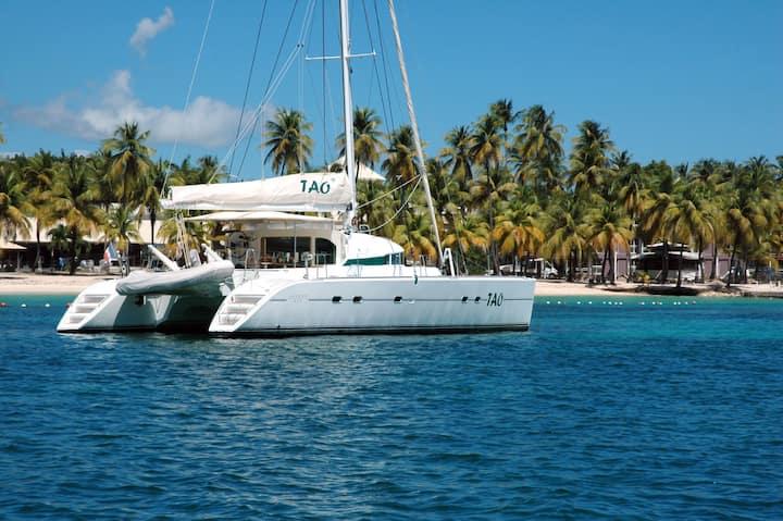 Croisières en catamaran aux Antilles