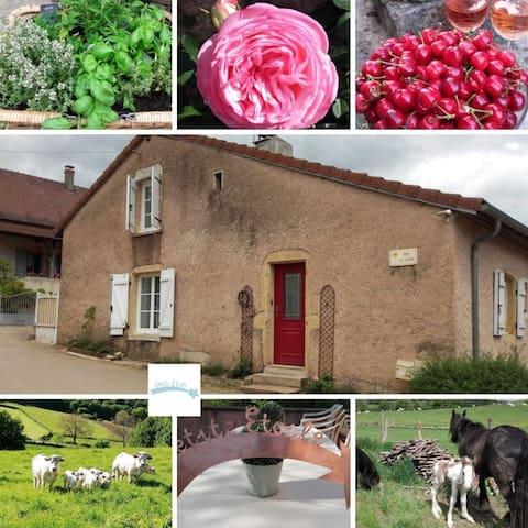 Gîte Petite Etoile 4 pers. Corlay Saône et Loire