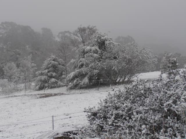 sometimes we even get snow in winter!