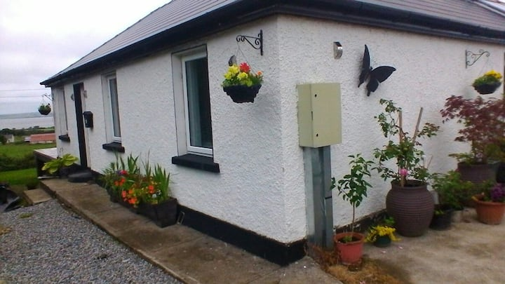 Flutter by Cottage