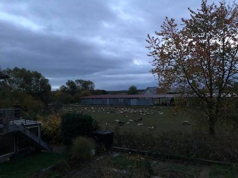 Maison équipée avec Jardin Nord Alsace