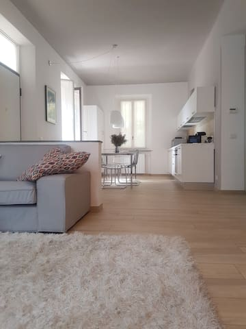Trendy and Modern Open Space in Historical Villa. - Varese - 公寓