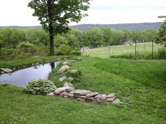 Misty Mountain Farm Studio / hot tub/ hiking