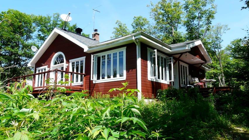 Maison luxueuse en pleine nature