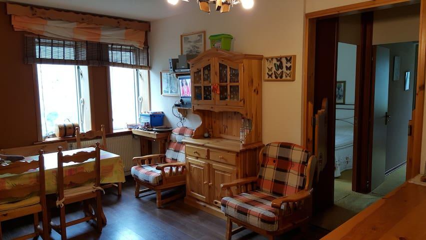 Ampio appartamento sulle piste - Artesina - Byt