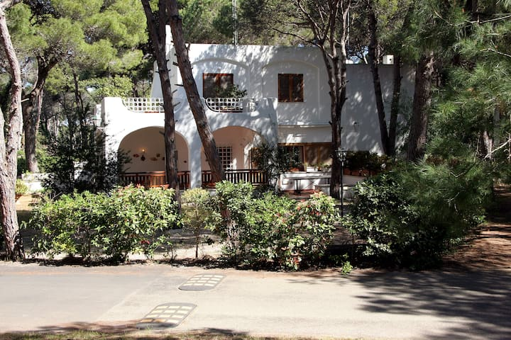 Campoverde Villa in parco naturale vicino al mare
