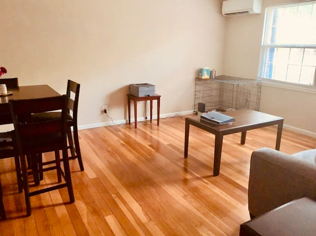 Cozy private one bedroom, shared apartment.