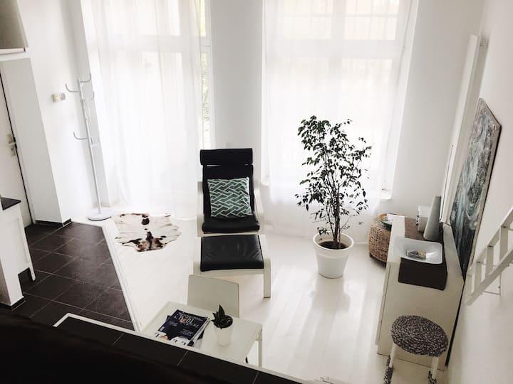 Studio apartment (Jugendstil house)