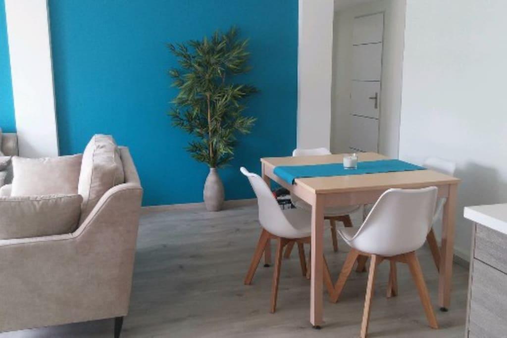 appartement très clair, espaces salon /salle à manger et espace nuit bien séparés