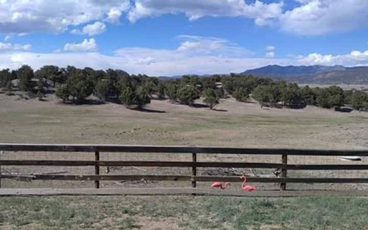 ★Vintage '57 Trailer w/Private Pasture Mtn Views!★