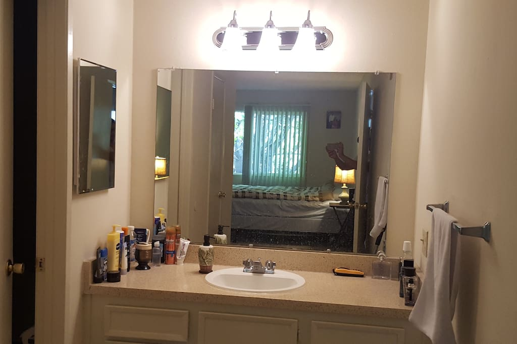 Huge mirror with sink