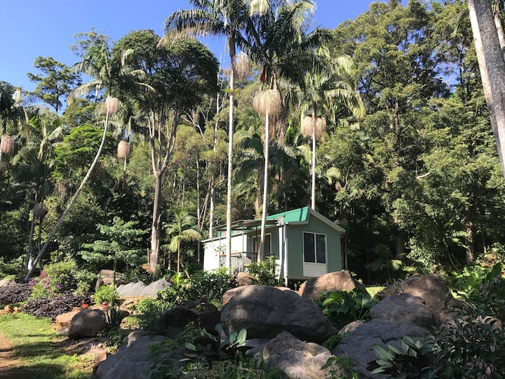 The Rainforest Retreat