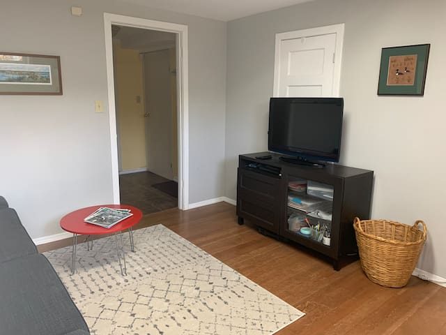 Bright 1 bedroom basement suite in Old Strathcona