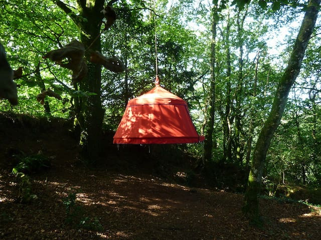 Nuit insolite en  Bretagne, les Plum'arbres - Trémargat