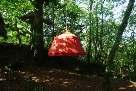 Nuit insolite en  Bretagne, les Plum'arbres - Trémargat - Treehouse