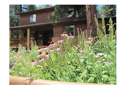Mt Elden Home Base #2 Sleeps 3-Queen&Twin Mt Apt
