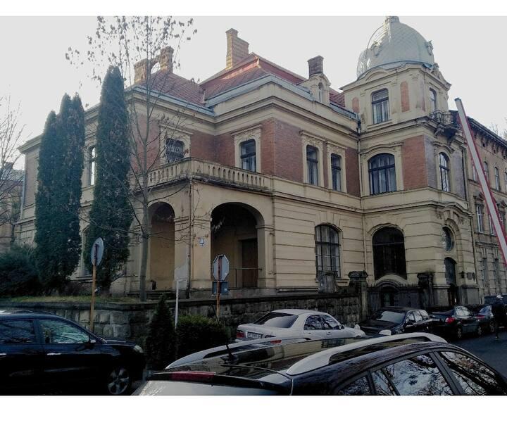 Potulitsky's palace, history!)