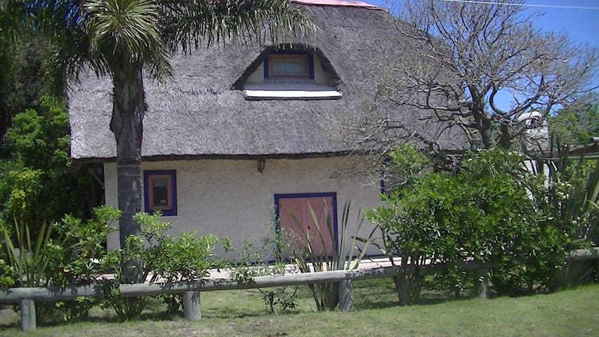 El Leon a 100m de playa los botes - La Paloma - House