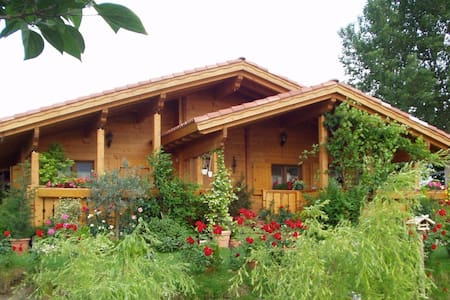 B&B Paraiso Madera, comfort in un angolo di natura - Villa Bartolomea