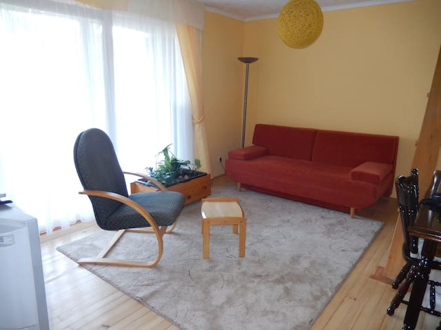 Apartment Monte Rosa - Three - Delnice - Apartamento