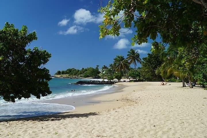 2 Cocotiers : Chambre d'hôte à 100m de la plage