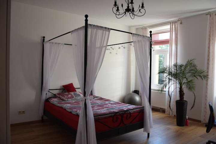 Comfy room with good public connections - Wien - Wohnung