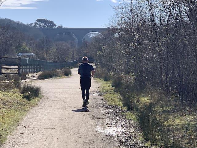 Bissoe Trail