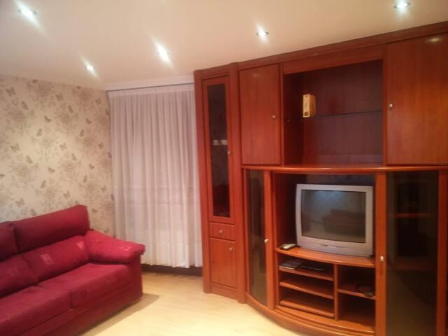 Amplio salón con dos cómodos sofás con asiento extraible.