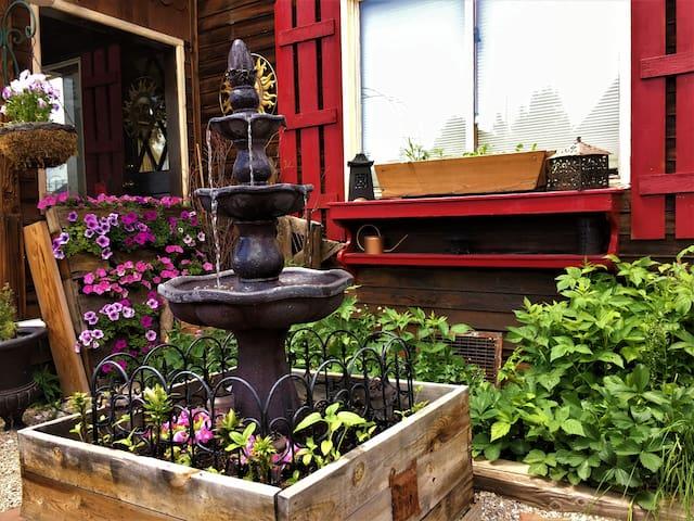 Front Garden in June