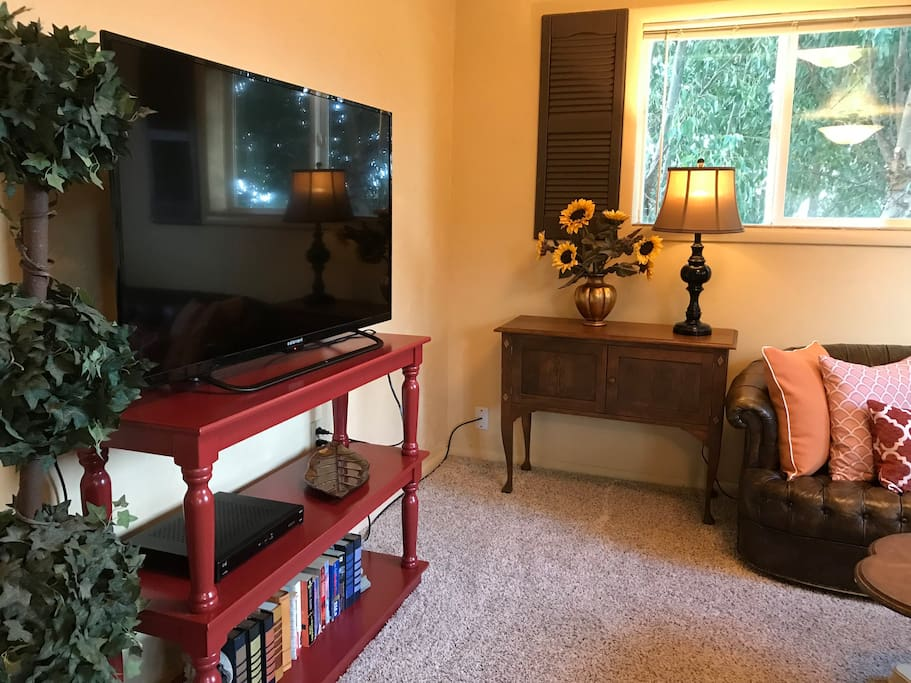 New 50 inch flat screen television