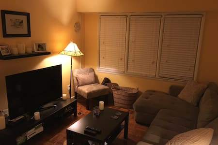 Cozy 1 BR: Yours for Inauguration/Womens March - Arlington - Apartamento