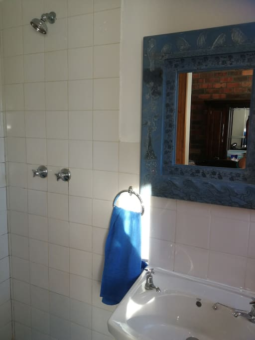 Shower, basin and toilet in bar room.