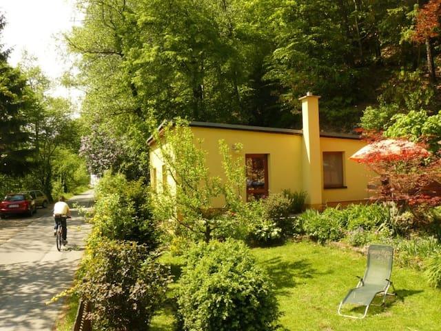Ferienhaus Elbblick - Königstein - Bungalow